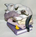 Image de Cat - Kitten tales