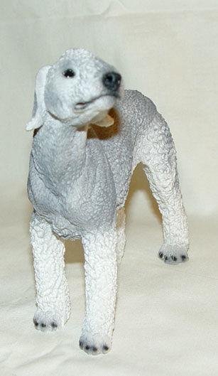Image de Bedlington terrier Dog