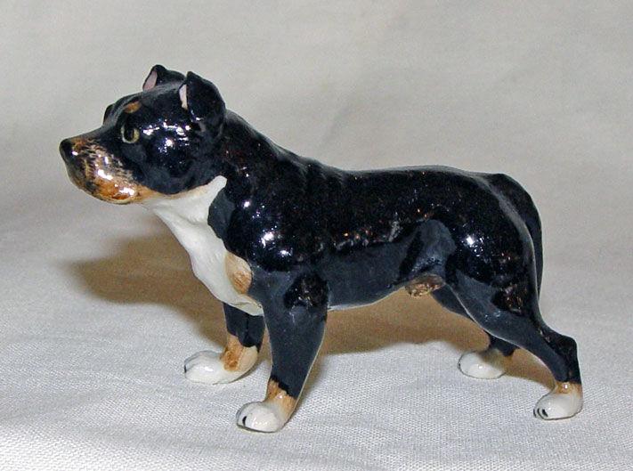 Image de Dog