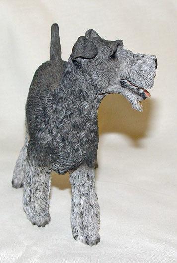 Image de Dog - Fox Terrier