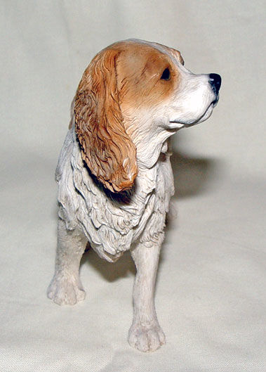 Image de Dog - King Charles
