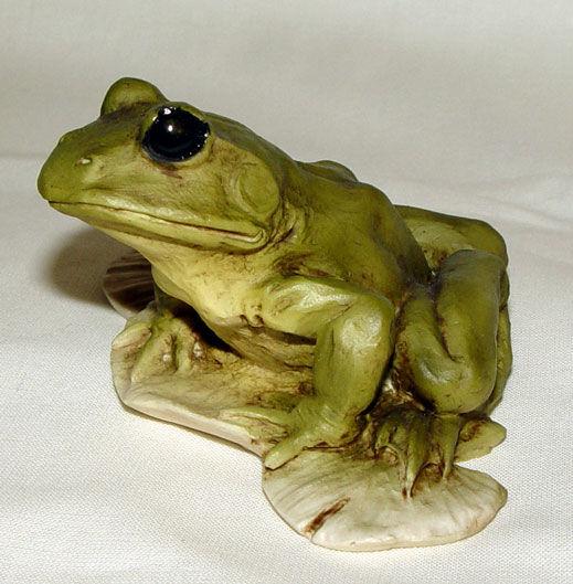 Image de Frog