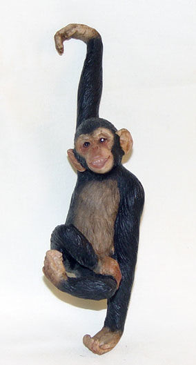 Image de Hanging monkeys