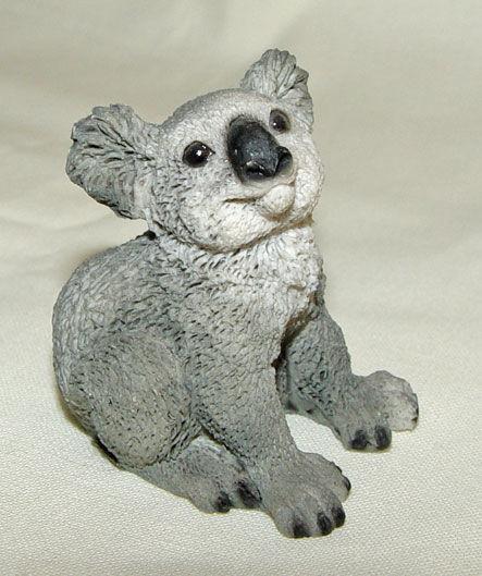 Image de Koala