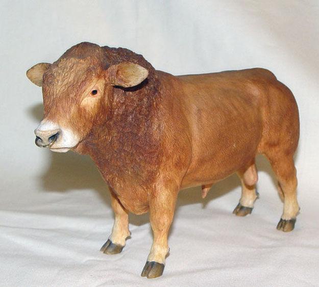 Image de Limousin Bull