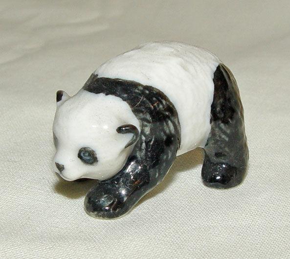 Image de Panda