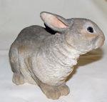 Image de Rabbit - Untroubled